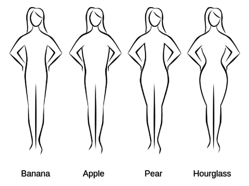 Body Types Explained