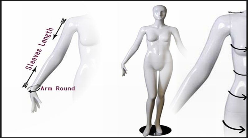 body measurements explained on mannequin